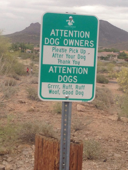 attention-dogs